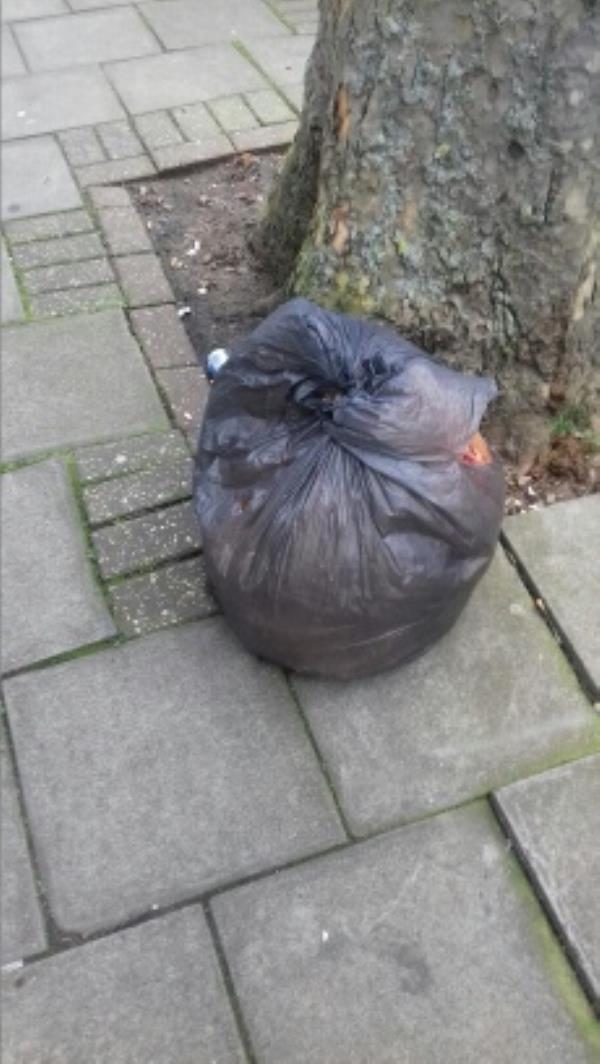 A bag of wastes dumped near 2 Dunstans Road -3a St Dunstans Road, London, E7 8DB