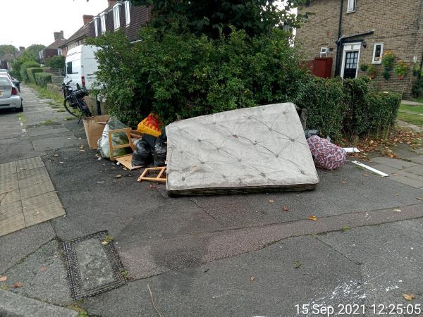 Bed mattress, fridge freezer, garden waste, cardboard box-112 Grangemill Road, Bellingham, SE6 3JZ