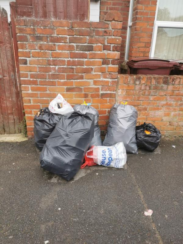 There are now more bags appearing. No sign of anyone from council. Please come out before rats do-107 Cranbury Road, Reading, RG30 2XB