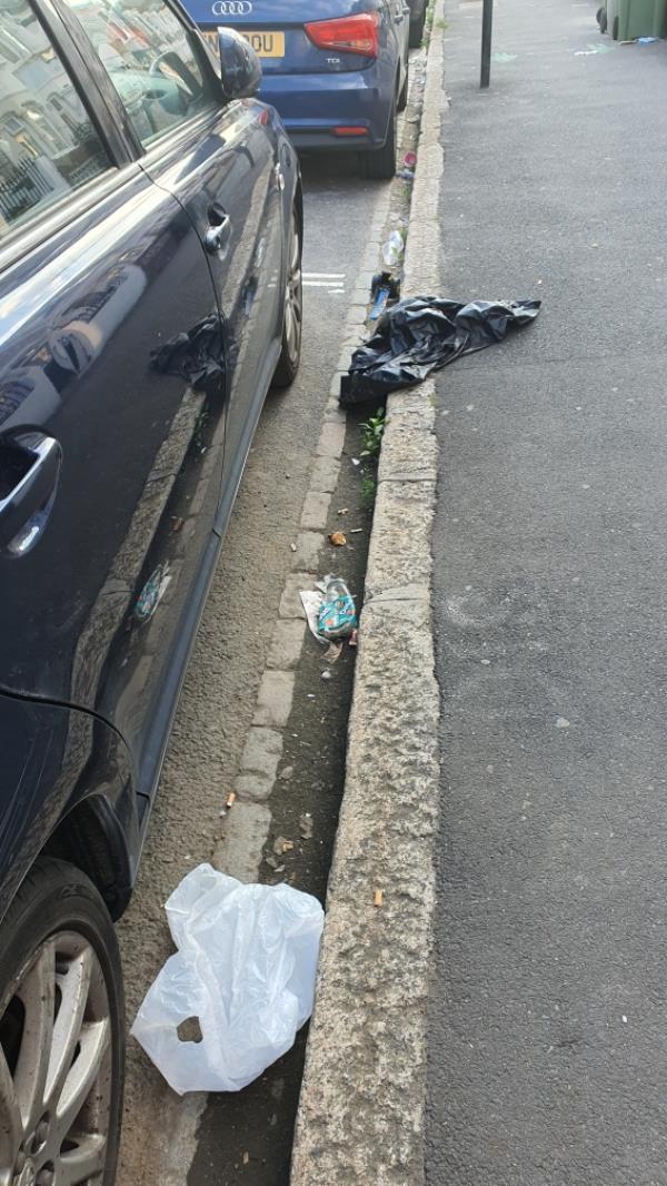 Litter -55 Saint George's Road, Green Street East, E7 8HT