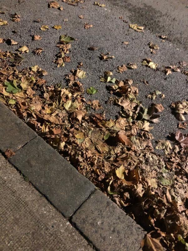 Sweeping -9 St Andrew's Road, London, E13 8QD