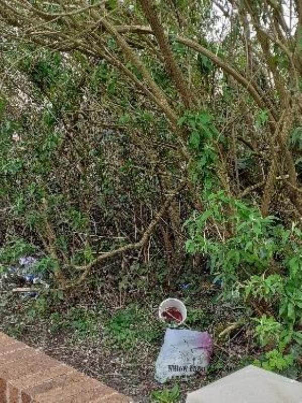 bushes filled with loads of rubbish. also seen rats. This needs to be cleared. There is a pathway right next to this-6 Park Meadow Avenue, Wolverhampton, WV14 6HA