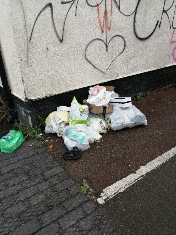 Bags of rubbish-63 Waterloo Road, Wolverhampton, WV1 4QU