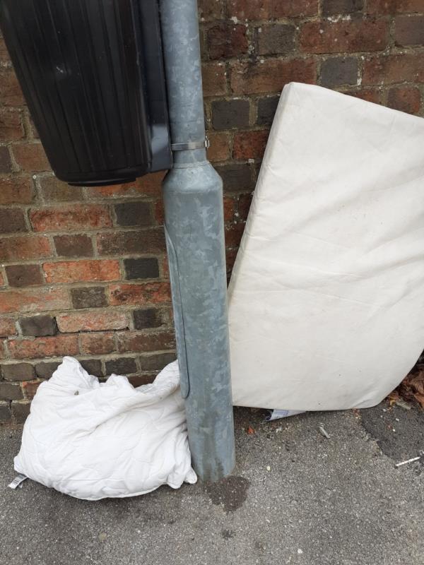 bedding on pavement-31 School Terrace, Reading, RG1 3LS