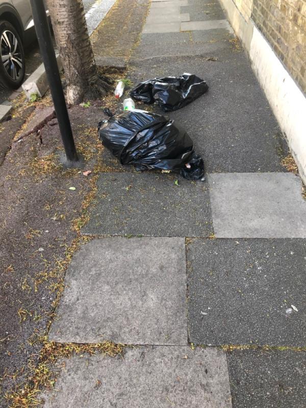 Bin bags-33 Fawn Road, Plaistow, E13 9BL