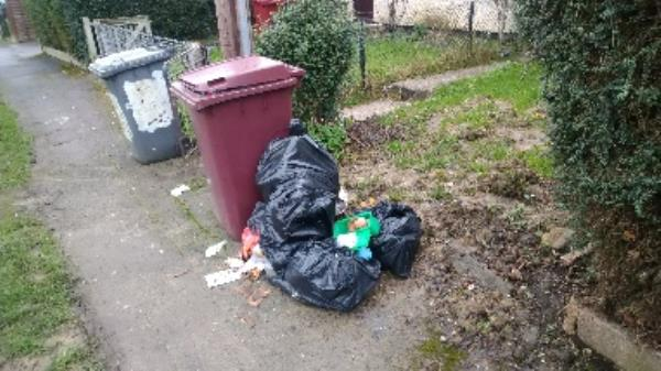 Flytipped bags believed to cone from 14 Wincanton Road needs invasigating ASP more bags been added since I reported this last week  image 1-24 Wincanton Road, Reading, RG2 8PB