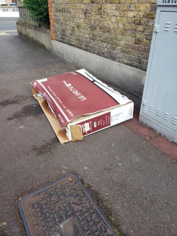 cardboard box of rubbish-56 Lichfield Road, East Ham, E6 3LG