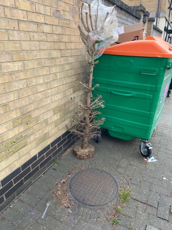 Christmas tree by recycling bin -East Lodge, 2 Wesley Avenue, Canning Town, E16 1SN
