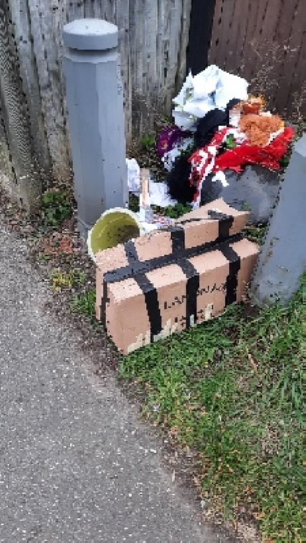 pile of rubbish on verge-95 SALISBURY, Reading, RG30 1BW