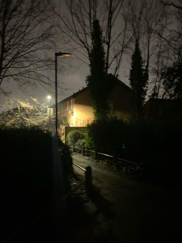 No light on a very long distance  Too dark for that area  And around the pond as well no lights  image 1-4 Chelmsford Close, London, E6 5QR