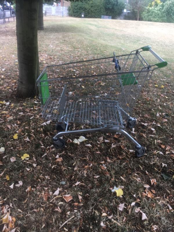 Trolley dumped in the park on Roman Road E6 -148 Roman Road, East Ham, E6 3SR