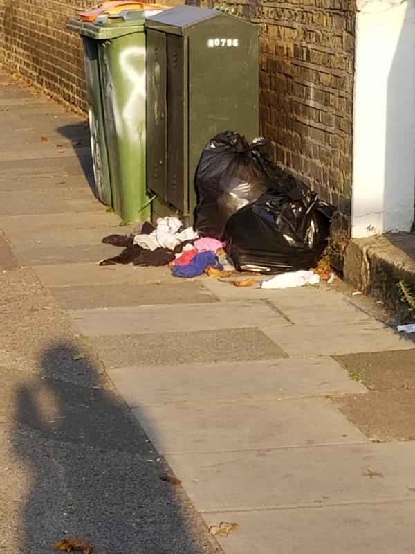 Again rubbish-2a Norwich Road, London, E7 9JH