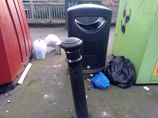 Domestic rubbish around bins-3 Baker Street, Reading, RG1 7LJ