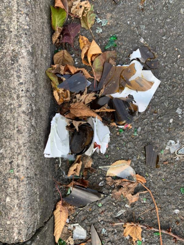 Large amounts of Broken glass in the gutter-2 Dickinson Avenue, Wolverhampton, WV10 9DJ