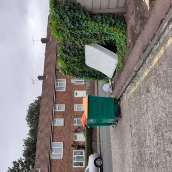 fly tipping around recycling bins by 1 -11 Globe Rd on public pathway and car park.-7 Globe Road, London, E15 1RF
