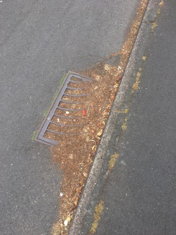 Gully blocked-9 Knights Crescent, Wolverhampton, WV6 9PZ