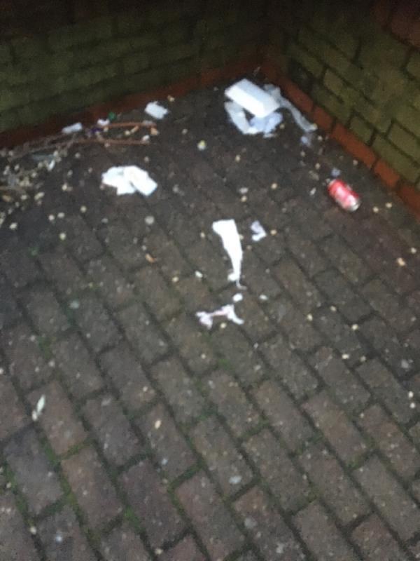 Bin over flowing -13 Durban Road, London, E15 3BW