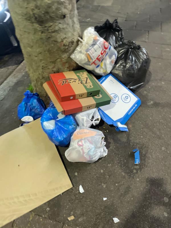 Rubbish  image 2-391d Katherine Road, Green Street East, E7 8LT