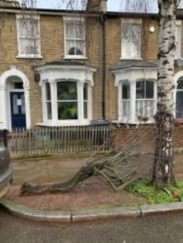 Please clear tree branch-1 Edric Road, New Cross Gate, SE14 5EN