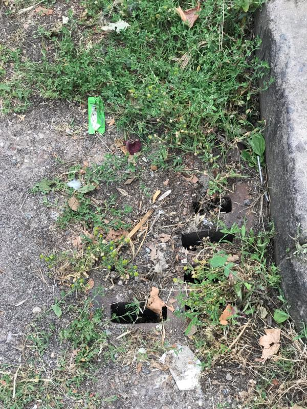 Blocked drains  image 1-225 New Parks Crescent, Leicester, LE3 9NZ