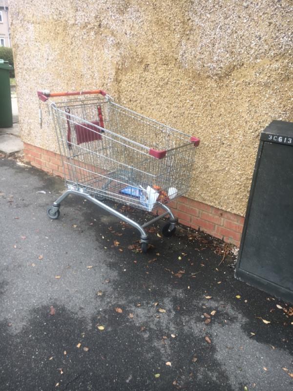 Sainsbury's trolley dumped on Lonsdale Avenue E6 -414 Lonsdale Avenue, East Ham, E6 3PL