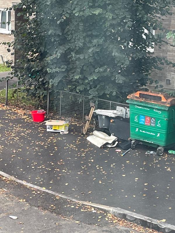 Rubbish -8 Clifford Rd, London E16 4JW, UK