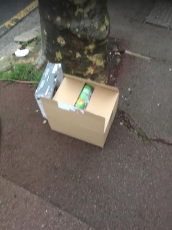 Rubbish dumped-16 Essex Road, Manor Park, E12 6RE