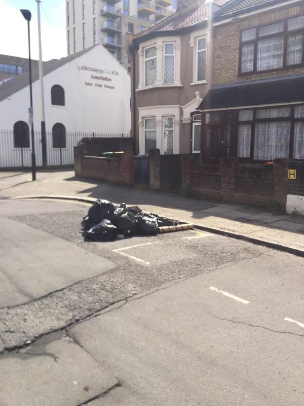 Garden rubbish in black bags dumped on street outside No's 46, 52 and 43 Tudor Road E6 image 1-41 Tudor Road, East Ham, E6 1DZ