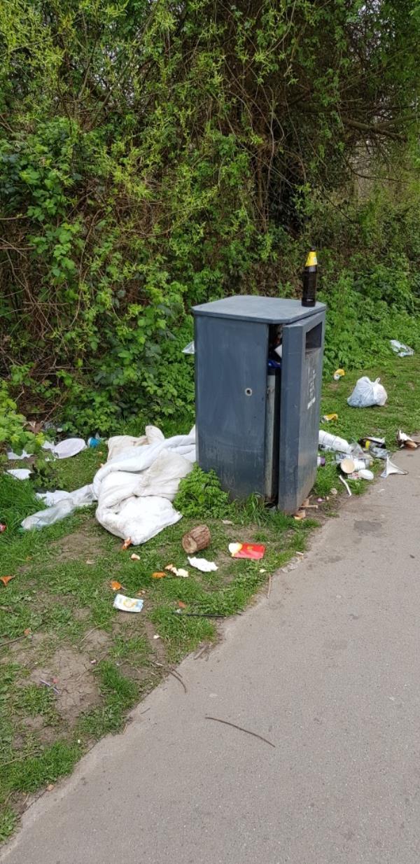 Rubbish, Ladywell fields near Catford Bridge station.-86 Ewhurst Road, Honor Oak Park, SE4 1SD
