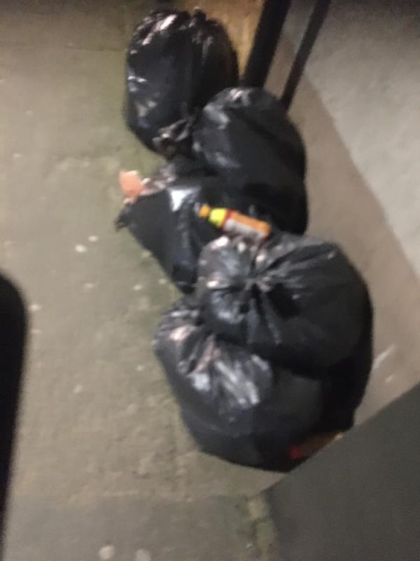 Rubbish  image 1-Katherine Road, East Ham, E6 1AB