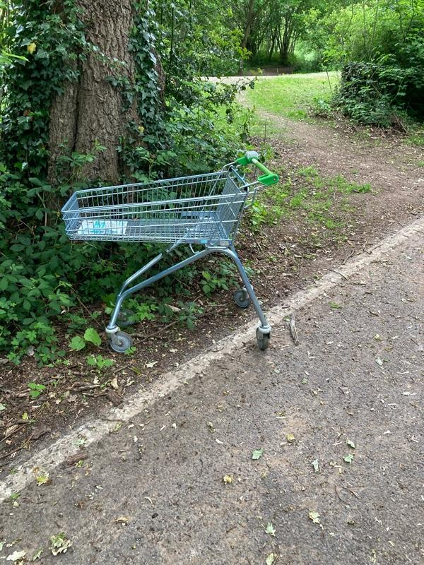 Another shopping trolley near Cove Brook -79 Brookhouse Road, Farnborough, GU14 0DP