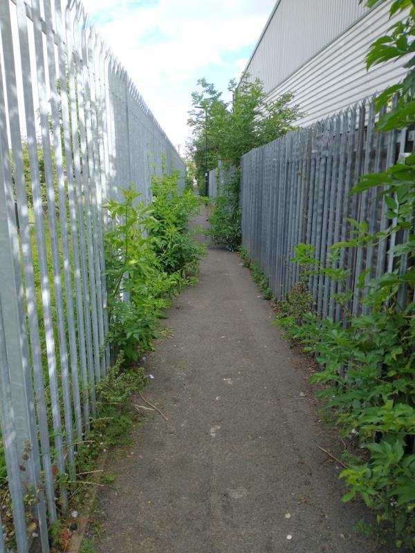 Overgrown footpath from Hunt Road to Bridge Road-7c Grand Union Way, London, UB2 4EX