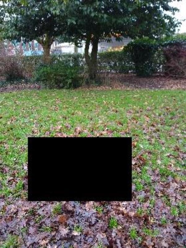 dead fox by Manor park pond image 1-334 High Street, Aldershot, GU12 4JU