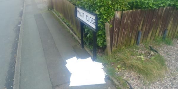 Bits of dolls house dumped on pavement in Myatt Close-8 Myatt Close, Wolverhampton, WV2 2DJ