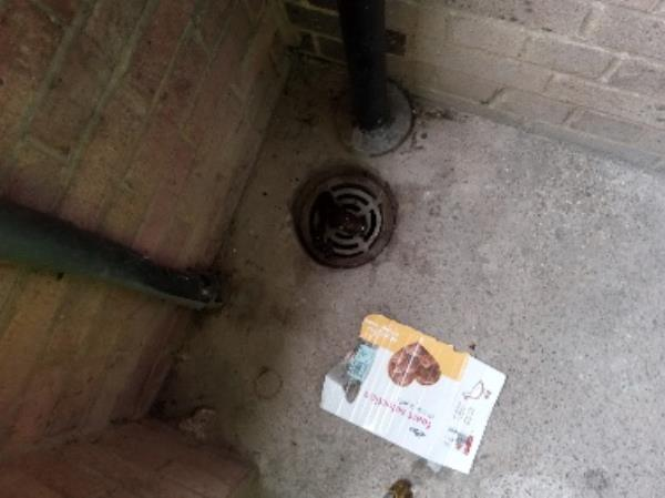 Human faeces in the doorway -85 Hadrian Walk East, Reading, RG2 7TZ