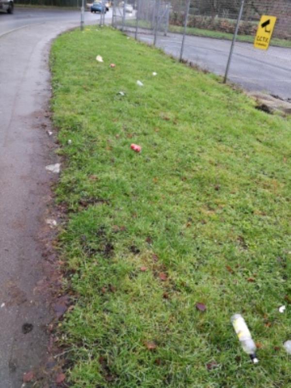 Rubbish strewn along side of road. -Mike Jackson House Sheeling Close, Aldershot, GU12 4SU