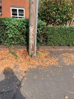 Graffiti on telecommunications box, Royal mail box, Telegraph poll, and dog poo bin image 2-73 Hallam Crescent East, Leicester, LE3 1DE