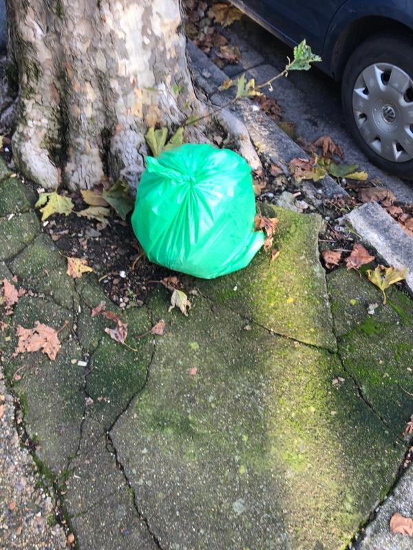Green waste-153 Henniker Gardens, London, E6 3HT