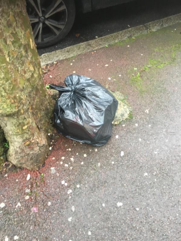 Rubbish image 1-125 Shelley Avenue, Manor Park, E12 6PX