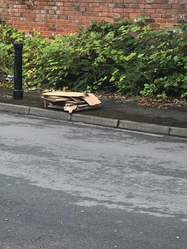 Pile of cardboard dumped at side of road -4 Paddock Road, Reading, RG4 5BY
