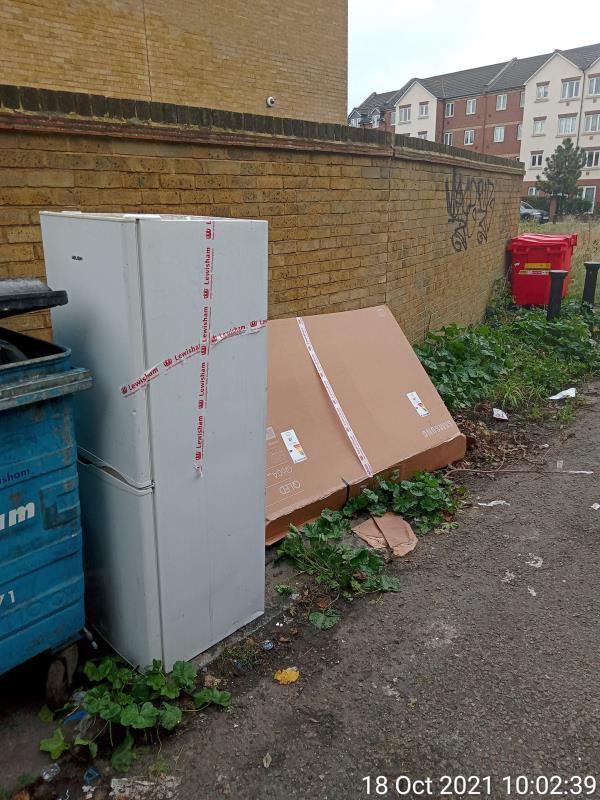 Fridge freezer, cardboard box. Rear of 197b Rushey Green, London, SE6 4BD-197b Rushey Green, London, SE6 4BD
