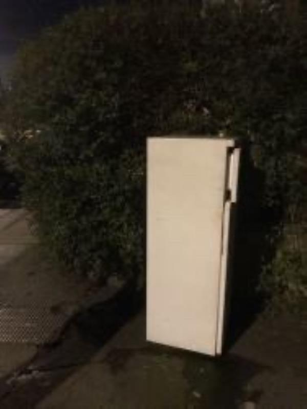 Please clear a fridge-6 Theodore Road, London, SE13 6HT