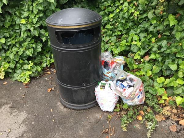 Dumped rubbish next to bin-33 Wolseley Street, Reading, RG1 6HF