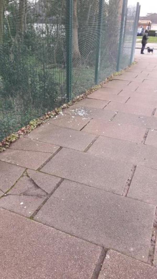 Broken glass on footpath as photo.-273 Sturdee Road, Leicester, LE2 9AH