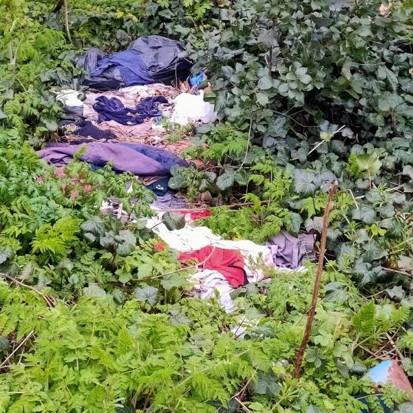 Waste dumped in bushes near pylon.-74 Jade Close, Canning Town, E16 3TZ