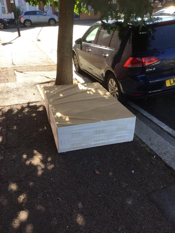 Tree pit-29 Saint Bartholomew's Road, East Ham, E6 3AG
