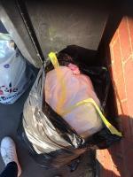 Rubbish dumped next to public bin outside 190 Lunt Road Bilston. AGAIN ! image 1-190 Lunt Road, Bilston, WV14 7BE