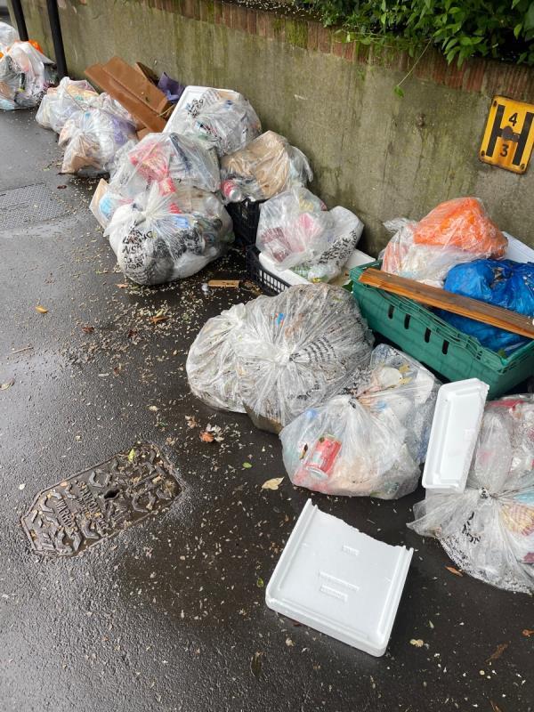 Rubbish  image 1-54 Browning Road, Manor Park, E12 6QZ