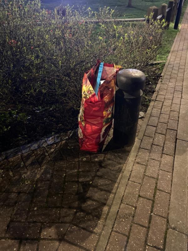 Random bag of rubbish dumped by path across the green-35 Hanameel Street, London, E16 1UA