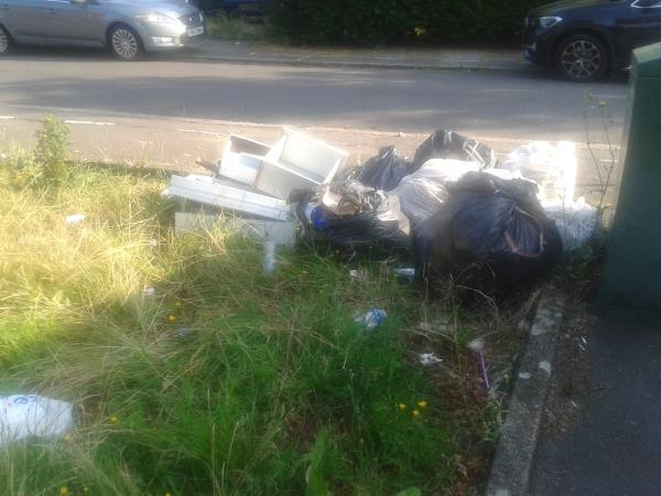 Junction of Shroffold Road. Please clear flytip from grass area-30 Ravenscar Road, Bromley, BR1 5PW